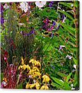 September Wildflowers Acrylic Print