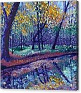 SEWP Creek Acrylic Print