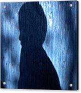Shadow Acrylic Print by Barry Shaffer