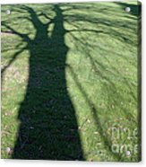 Shadow Of A Tree On Green Grass Acrylic Print