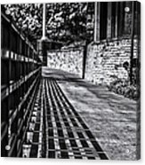 Shadow Walk Acrylic Print