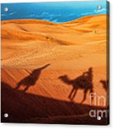 Shadows Of Desert Acrylic Print