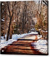 Shadowy Path Acrylic Print
