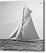 Shamrock II At Outer Mark 1901 Bw Acrylic Print