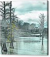 Shaw Mississippi Acrylic Print