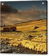 Shed In The Yorkshire Dales, England Acrylic Print