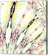Shell Art 3 Acrylic Print