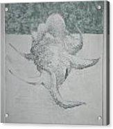 Shell Landscape Acrylic Print