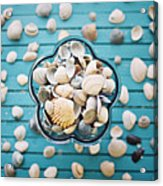 Shells In Bowl Acrylic Print