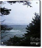 Shelter From Irene Acrylic Print