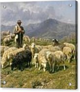 Shepherd Of The Pyrenees Acrylic Print