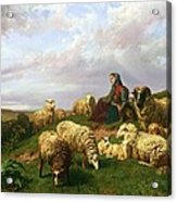 Shepherdess Resting With Her Flock Acrylic Print