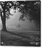 Shiloh In The Fog Acrylic Print by David Bearden