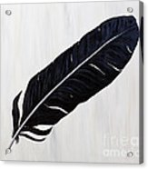 Shiny Feather Acrylic Print