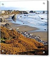 Shores Of Oregon Acrylic Print