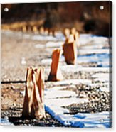 Side Road Luminaries Acrylic Print by Lisa  Spencer
