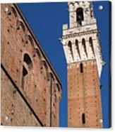 Siena, Torre Del Mangia Acrylic Print