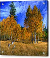 Sierra Nevada Fall Colors Lake Tahoe Acrylic Print by Scott McGuire