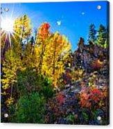 Sierra Nevada Fall Colors Lassen County California Acrylic Print by Scott McGuire