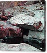Sierra Nevada Forest Acrylic Print by Naxart Studio