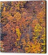 Sierra Nevada National Park Acrylic Print