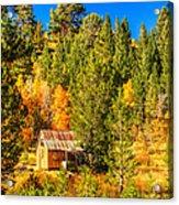 Sierra Nevada Rustic Americana Barn With Aspen Fall Color Acrylic Print