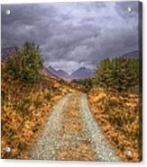 Silent Valley Road Acrylic Print by Matthew Green