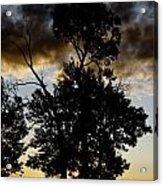 Silhouette Sunset Acrylic Print