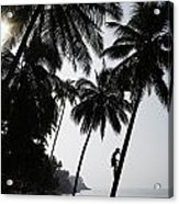 Silhouetted Man Climbing A Palm Tree To Acrylic Print