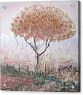 Silk Tree In Brown And Purple  Acrylic Print