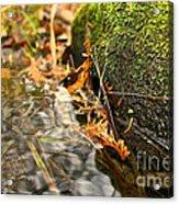 Silky Water Acrylic Print