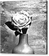 Silver Lady Acrylic Print
