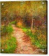 Simple Pathways Acrylic Print