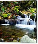 Simple Pools  Acrylic Print