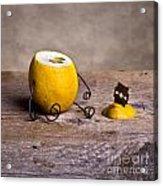 Simple Things 10 Acrylic Print