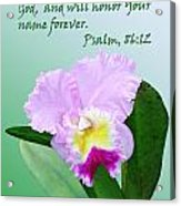 Single Pink Orchid Ps. 86v12 Acrylic Print
