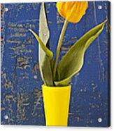 Single Yellow Tulip In Yellow Vase Acrylic Print