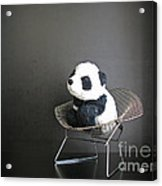 Sitting Meditation. Floyd From Travelling Pandas Series. Acrylic Print