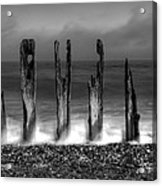 Six Sticks Acrylic Print by Mark Leader