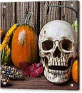 Skull And Gourds Acrylic Print