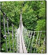 Sky Bridge Acrylic Print