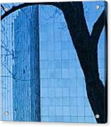 Sky Scraper Tall Building Abstract With Windows Tree And Reflections No.0066 Acrylic Print