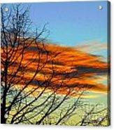 Sky Scratcher Acrylic Print