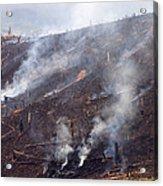 Slash And Burn Agriculture Acrylic Print