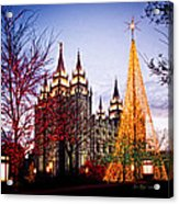 Slc Temple Tree Light Acrylic Print