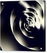 Sleek Modern Snail Acrylic Print