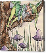 Sleeping Gnome Acrylic Print
