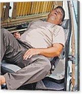 Sleeping On The Job Acrylic Print
