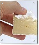 Slice Of Camembert Cheese In Hand Acrylic Print