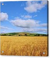 Slieveardagh Hills, Co Kilkenny Acrylic Print